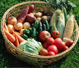 叶谷の新鮮野菜